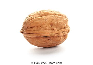 walnut - close-up of a walnut isolated on white background