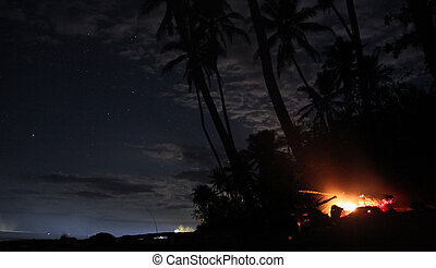 Campfire under palm tree on the beach at night, Fiji