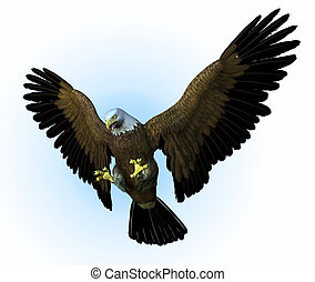 Eagle Swooping Down - Eagle swooping down - 3D render