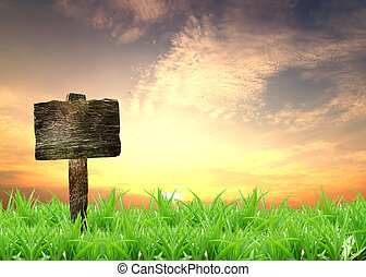 sign with sunset and grass in the background