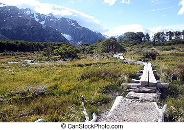 Footpath - Wooden bridge and path in national park near El...