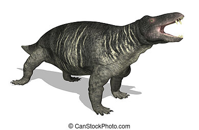 Jonkeria - The Jonkeria is a therapsid mammal-like reptile...