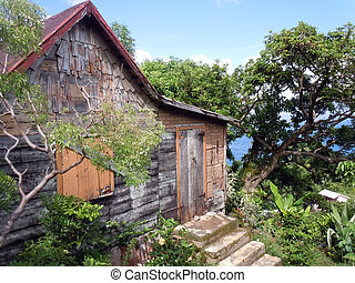 House - Wooden house and tree on the caribean island...