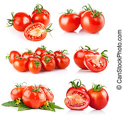 set fresh tomato vegetables isolated on white background