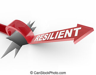 Resilient - Rising to Challenge and Overcoming a Problem -...