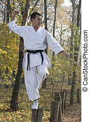 Karate in forestry - Karate training in nature in kung fu...