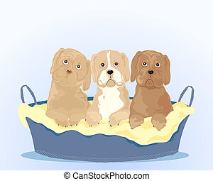 puppies - an illustration of three attractive young puppies...