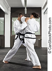 martial arts master - An image of a women and a man fighting