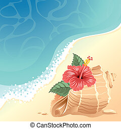 Sea background with shell - Sea background with large shell...