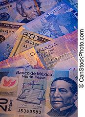 norte, norteamericano, moneda