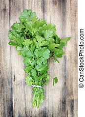 Coriander. - Fresh, organically grown coriander or cilantro...