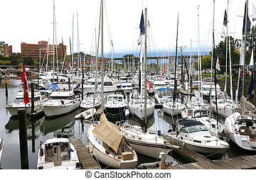 A crowded marina in Vancouver BC.