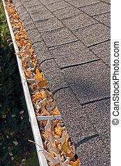 Leaves in rain gutter. - Home maintenance problem: Fall...