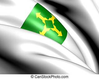 Federal District flag, Brazil Close up