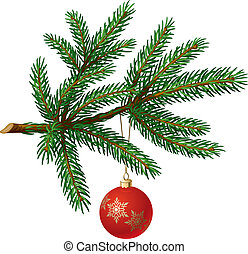 Pine tree branch with Christmas ball on white background....