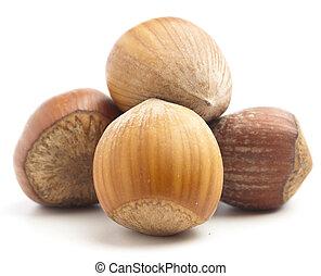 hazelnuts - hazelnut pile isolated on a white background