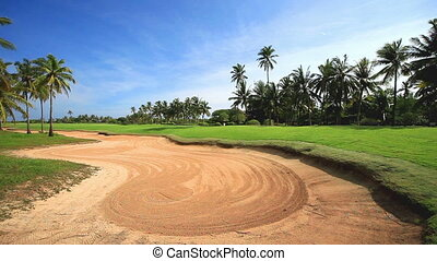 Ideal tropical golf field video.