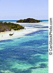 beautiful scenic beaches and clear water in the Keys with...
