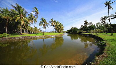 Sunny tropical landscape with pond and palmtrees.