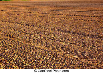 mark of tire on field - mark of tire on freshly plowed field...