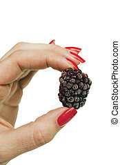 Woman hand holding raspberry