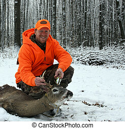 whitetail deer and hunter - hunter in safety orange with a...