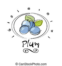plum - hand drawn plum in vignette