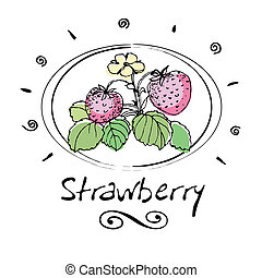 strawberry - hand drawn strawberry in vignette