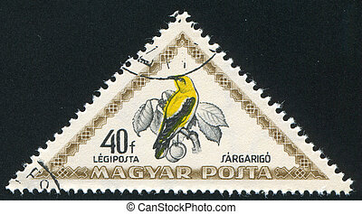 Golden oriole - HUNGARY - CIRCA 1952: stamp printed by...