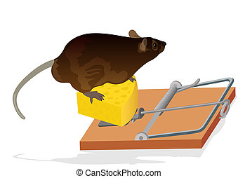 Rat and mouse trap - The rat sits on the cheese. Mousetrap...
