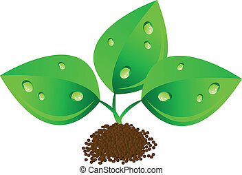 Vector green leafs with waterdrops - vector illustrations of...