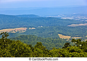 Beautiful view of the popular Blue Ridge Mountain in...