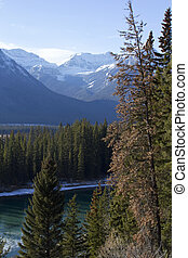 Rocky Mountains in Banff National Park