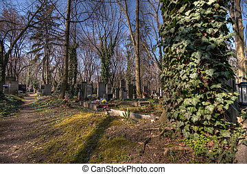 old graveyard in Prag - historic cemetary Olsany in Prag,...