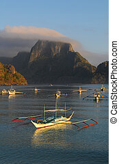 Palawan Island in Philippines - Beautiful coast of the...