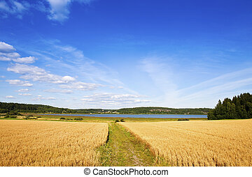 Finnish agriculture