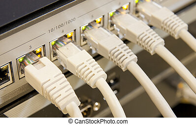 network cables connected to switch - network cables RJ45...