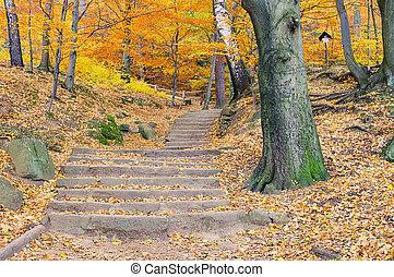 hiking trail 04