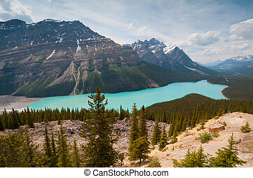 Panorama of Peyto Lake