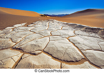 Bottom of the Death Valley Dunes