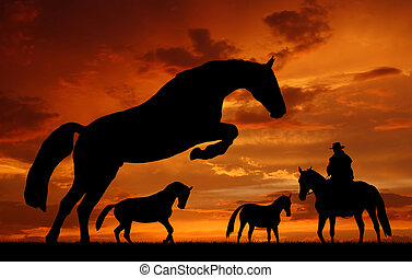 cowboy with horses - Silhouette cowboy with horses in the...