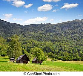 Julian Alps, Slovenia - Valley Voje in Triglav National Park...