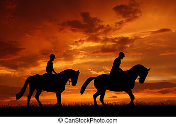 rider on a horse - silhouette of a rider on a horse