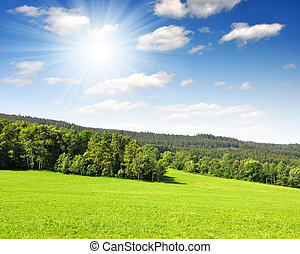 Sumava - Czech Republic - Spring landscape in the national...