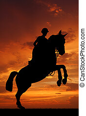 rider on a jumping horse - silhouette of a rider on a...