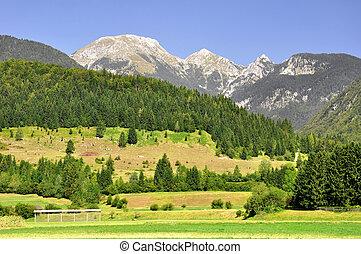 Julian Alps, Slovenia - Triglav National Park - Julian Alps,...
