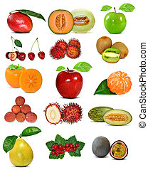 fruit isolated