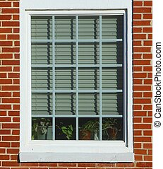 WHITE WINDOW - A white-framed window with closed blinds