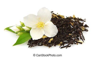 jasmine and tea - beautiful flowers of jasmine and tea on...