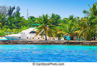 The yacht at a mooring among tropical palm trees